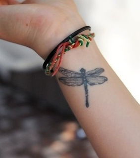 beautiful, dragonfly and hand
