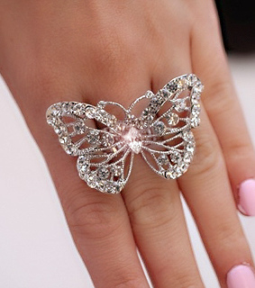 accesories, butterflie and nice