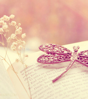 book, butterfly and cute