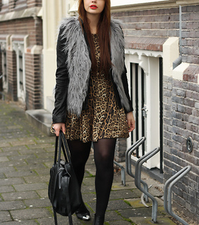 animal print, cheeta and cool