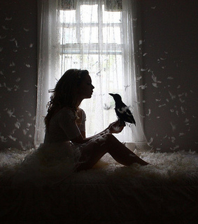 beautiful, bed and bird