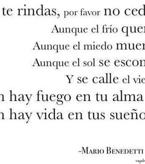 benedetti and frase