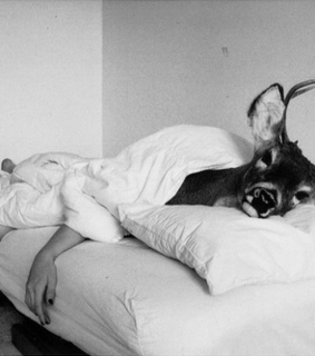 beautiful, bed and black and white