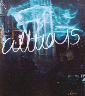 always, forever and harry potter
