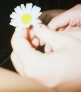 flower, hands and indie