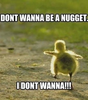 bitch, chick and nugget