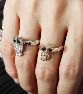 accessories, adjustable rings and animal rings