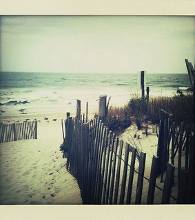 beach, fence and iphone photography