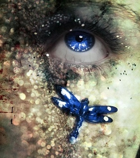 blue, dragonfly and eye