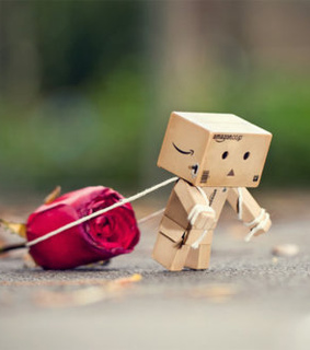 danbo, flower and love