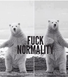 bear, fuck and normality