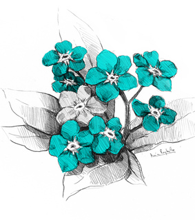drawing, flower and flowers