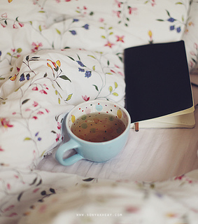 bed, book and cama