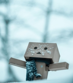 cold, danbo and snow