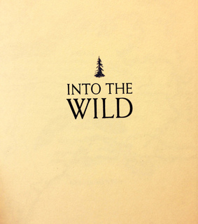 indie, into the wild and movie