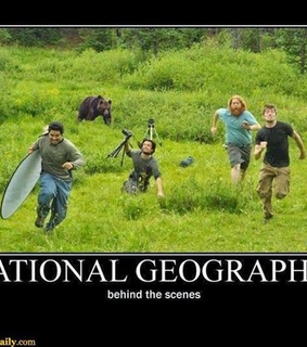 funny, lol and national geographic