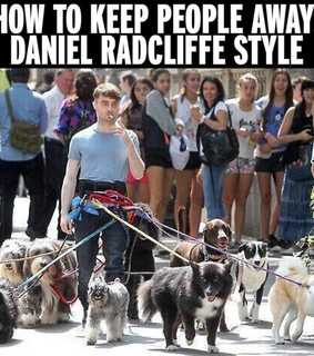 daniel, dogs and funny