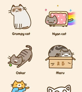 cats, cute and funny