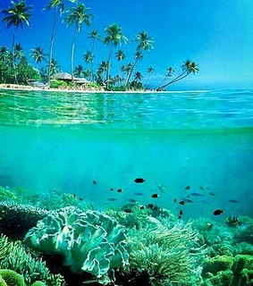 beautiful pic, beautiful place and indonesia