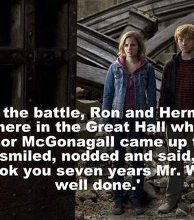harry potter, professor mcgonagall and ron and hermione