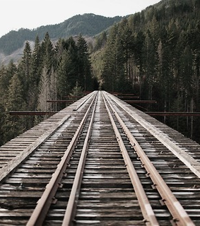 forest, landscape and rail