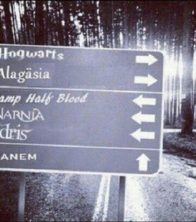 chronicles of narnia, eragon and harry potter