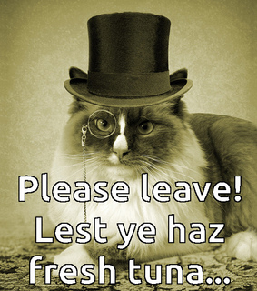 cat, leave and top hat