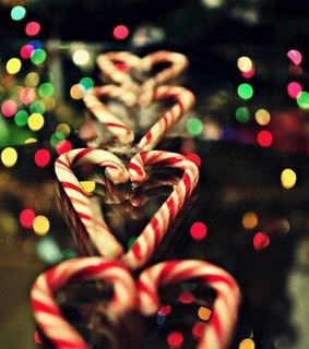 candy, canes and christmas