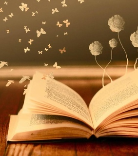 bokeh, books and butterfly