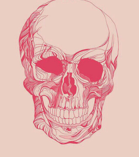 pink and skull wallpaper