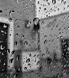blacl and white, darkness and drops