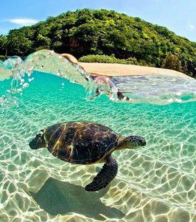 beach, beautiful and clear water