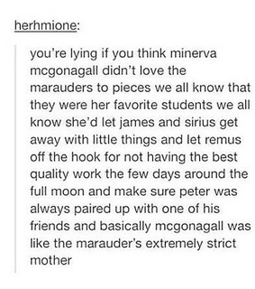 harry potter, marauders and minerva