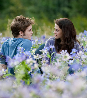 amor, bella swan and crepusculo