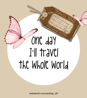 baggage, butterflies and cities