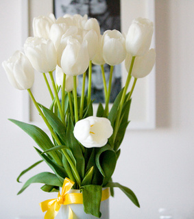 bouquet, flowers and tulips