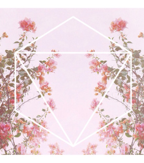 background, hipster and roses