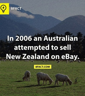ebay, fact and funny