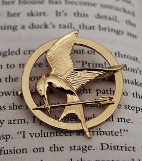 book, catching fire and district 12