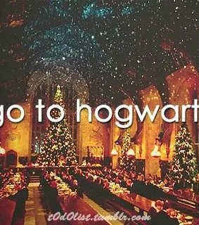harry, hermoine and hogwarts