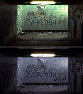 question everything and why?