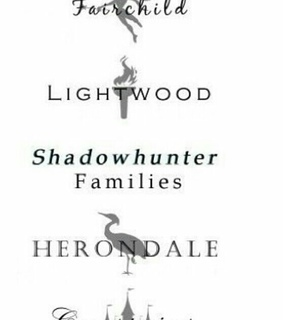 herondale, the mortal instruments and lightwood