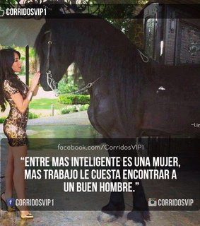 frases, inteligente and mujeres