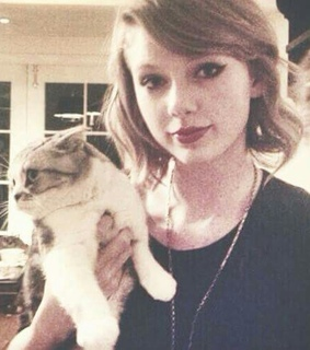 cat, meredith and music