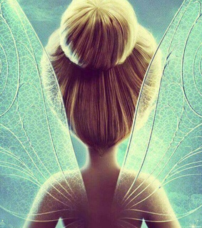 beutifull, fairy and fly