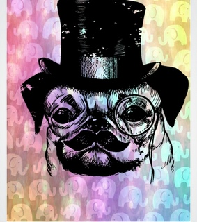 colorful, pug and top hat