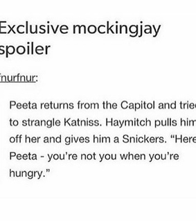 funny, haymitch and katniss everdeen