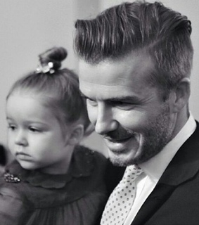 beauty, david beckham and gentleman
