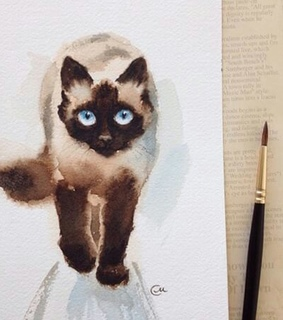 art, cat and draw