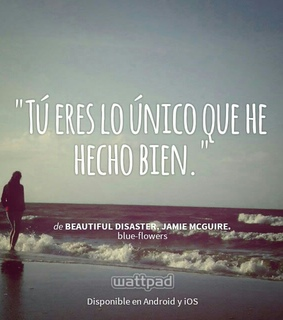 beautiful disaster, libros and travis maddox
